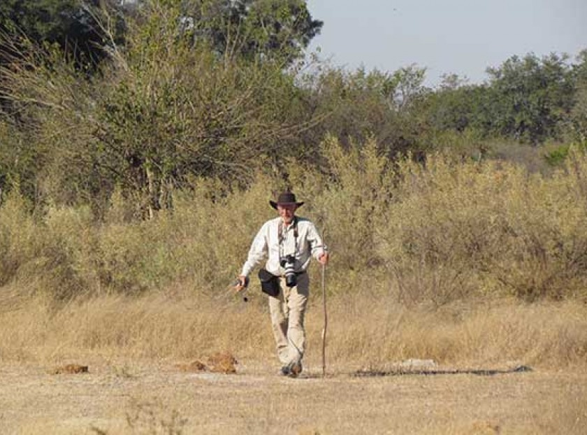 Walking in the Okavango